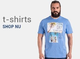Grote maten t-shirts korte mouw